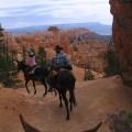 Bryce Canyon excursiones a caballo