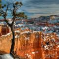 Bryce Canyon en invierno