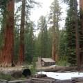 Cabaña en Yosemite