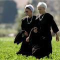 Costa Este - Amish