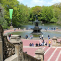 Central Park3